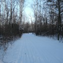 The joys of cross-country skiing in Birds Hill Park