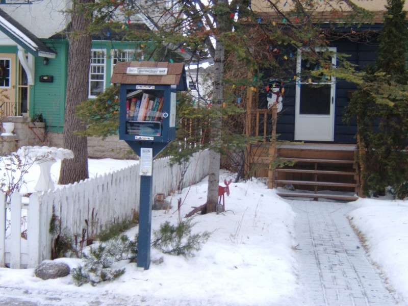 Little free libraries are becoming a more common sight in many neighborhoods.