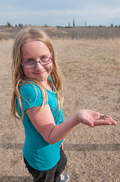 Emma Burton stops to play with an insect while she volunteers with her dad during the 2014 Spruce Woods Ultra