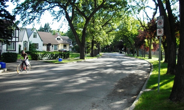 Shade glorious shade in Wolseley: no little consideration on a hot day
