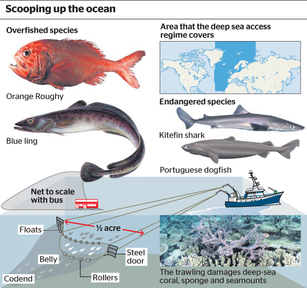 Deep sea trawlers are mindless. They are not sentient.