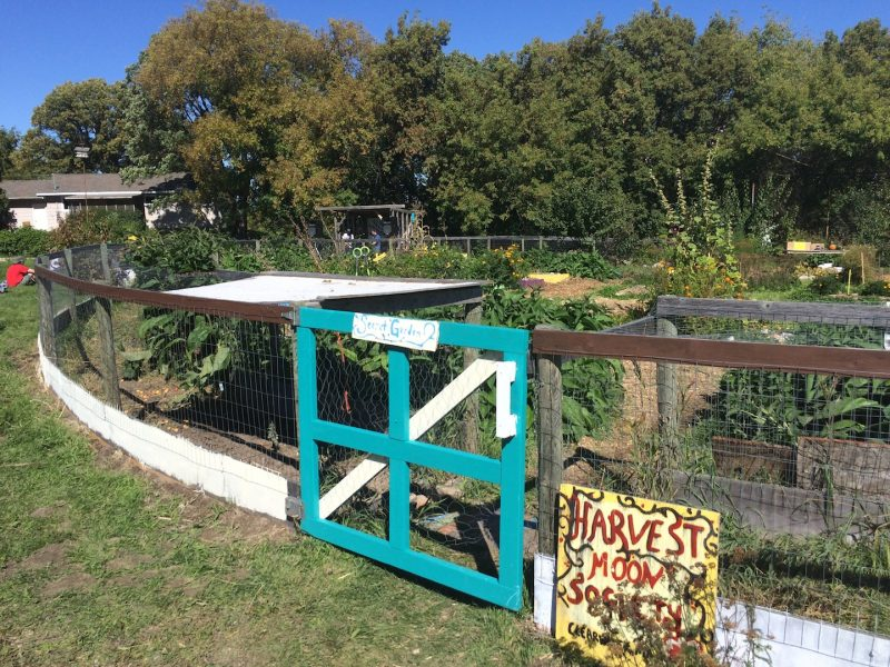 One of several gardens tended by Harvest Moon Society. Third 'jam stage' in the background. /NOAH ERENBERG