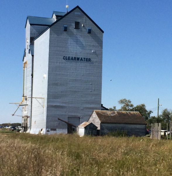 Picturesque Clearwater has been home to Harvest Moon Festival for 15 years. /NOAH ERENBERG