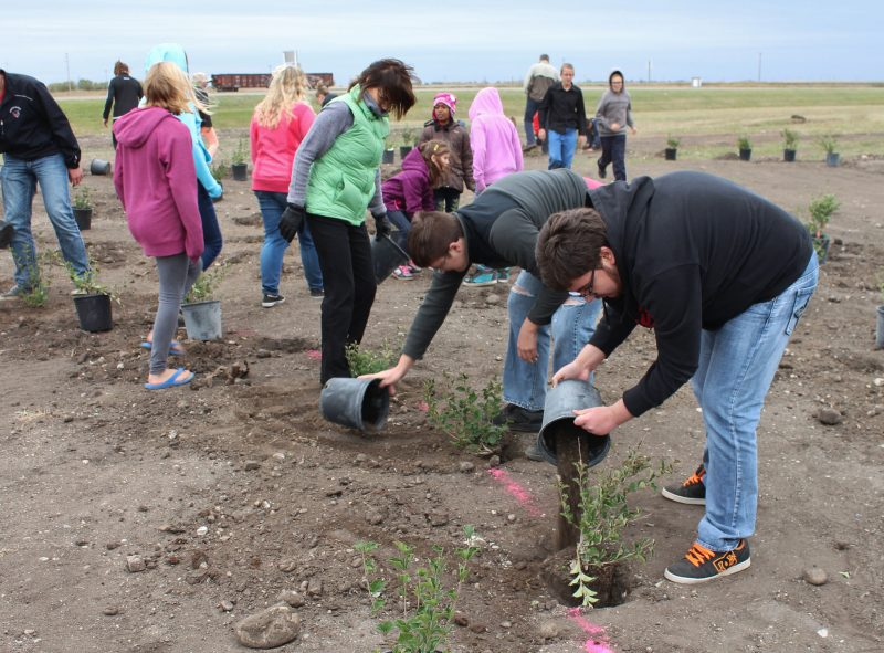 Rivers students planting trees. /CHRISTIAN CASSIDY