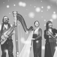 Manitoba harpist comes home with a new Christmas album