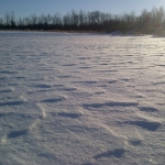 Winter desert.<br /><em>Submitted by Noah Erenberg</em>