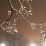 Frosty night.<br /><em>Submitted by Noah Erenberg</em>