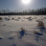 Manitoba's winter desert.<br /><em>Submitted by Noah Erenberg</em>
