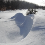 Winter waves.<br /><em>Submitted by Noah Erenberg</em>