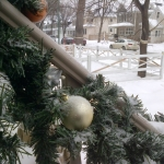 Frozen decorations.<br /><em>Submitted by Bruce Little</em>