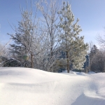 Winter postcard.<br /><em>Submitted by Noah Erenberg</em>