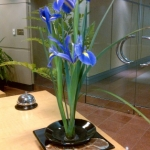 Ikebana - Japanese flower design.<br /><em>Submitted by Noah Erenberg</em>