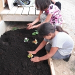 Let the planting begin.<br /><em>Submitted by Cheryl Cohan</em>
