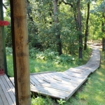 Forest path at Camp Manitou.<br /><em>Submitted by Jenna Friesen</em>