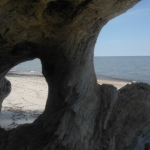 Driftwood on Lake Winnipeg.<br /><em>Submitted by Cheryl Cohan</em>