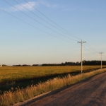 Telephone poles.<br /><em>Submitted by Sara Shyiak</em>