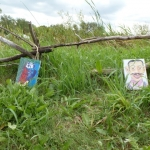 Art outstanding in its field.<br /><em>Submitted by Holly Cain</em>