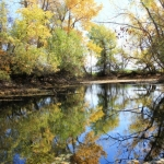 October pond - Tinker Creek Trail.<br /><em>Submitted by Greg Petzold</em>