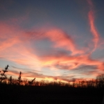 Red sky at night.<br /><em>Submitted by Noah Erenberg.</em>