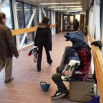 Skywalk busker horsing around.<br /><em>Submitted by Greg Petzold</em>