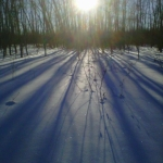 Winter shadows.<br /><em>Submitted by Cheryl Cohan</em>