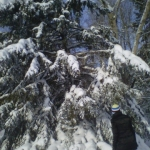 Heavy snow.<br /><em>Submitted by Noah Erenberg</em>