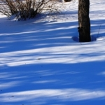 Winter backyard blues.<br /><em>Submitted by Greg Petzold</em>