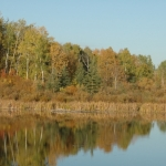 Autumn's reflection.<br /><em>Submitted by Terri Chick-Gall</em>