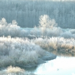 Winter's welcome.<br /><em>Submitted by Terri Chick-Gall</em>